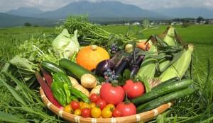 【イベント】夏野菜が旬!BBQで移住者交流しませんか?