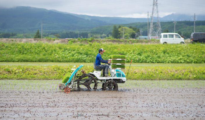 【新規就農】未経験から農家になり、長野に移住して14年が経ちました