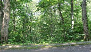 【町有地】 野尻湖周辺の自然に囲まれた別荘地