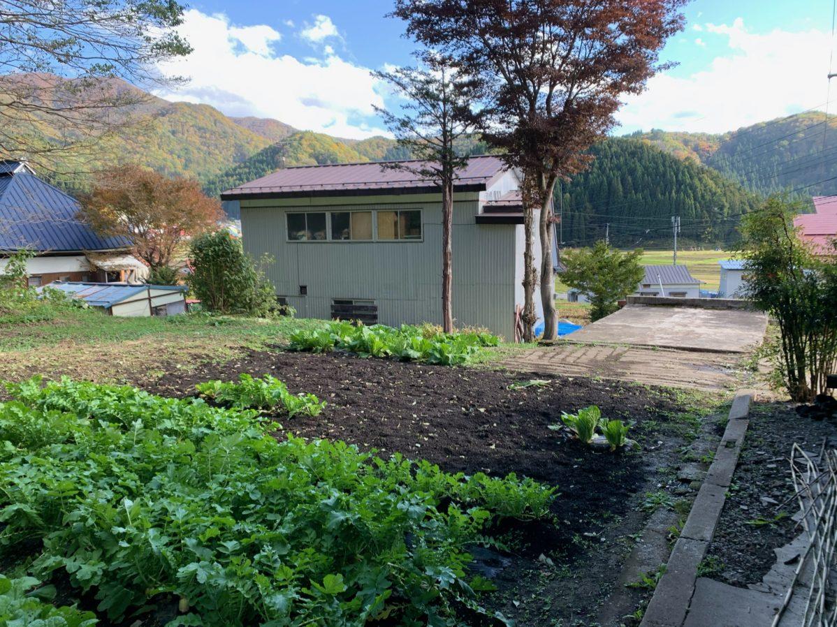 古民家についている家庭菜園