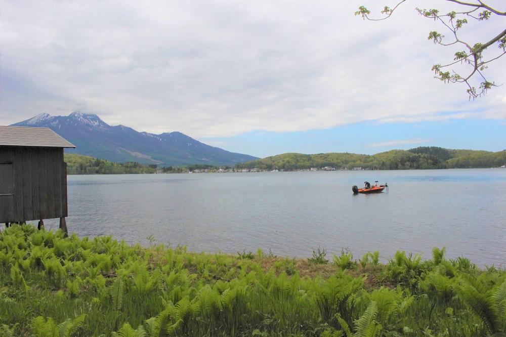 この景色!湖畔の水音に癒される♪