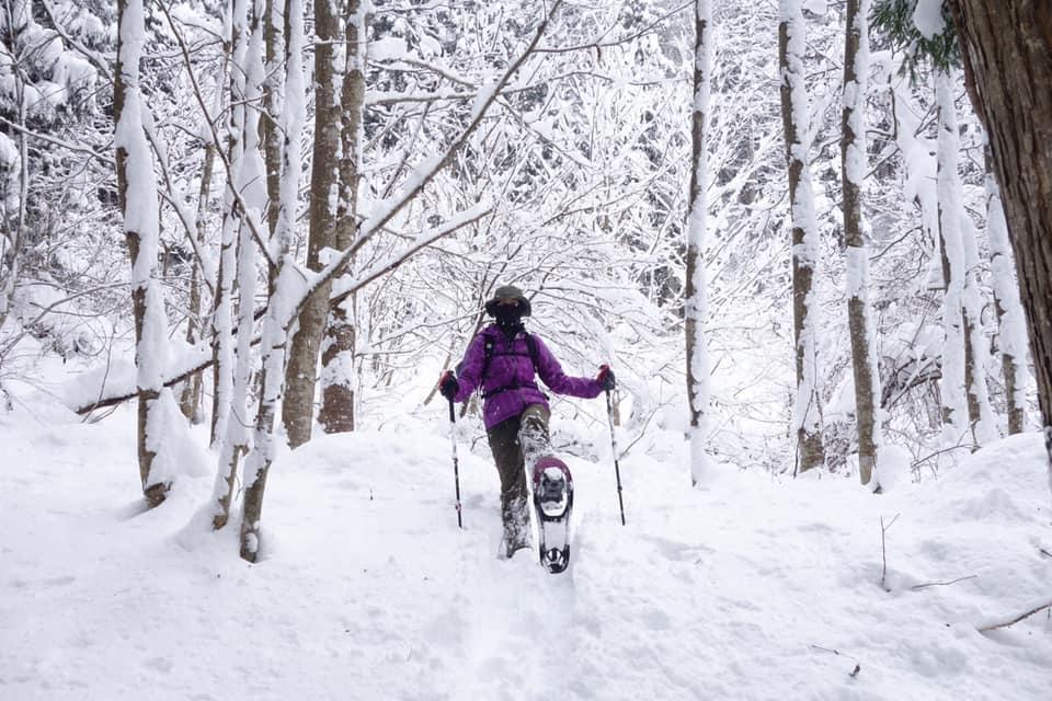 スノーシューを履いて積雪時の真っ白い森の中を歩いている。