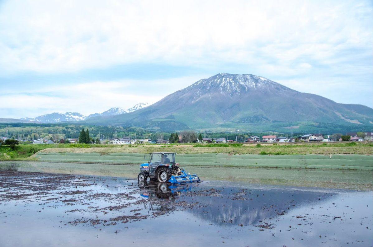 春の黒姫山と水を張った田んぼの景色。山には残雪がある。