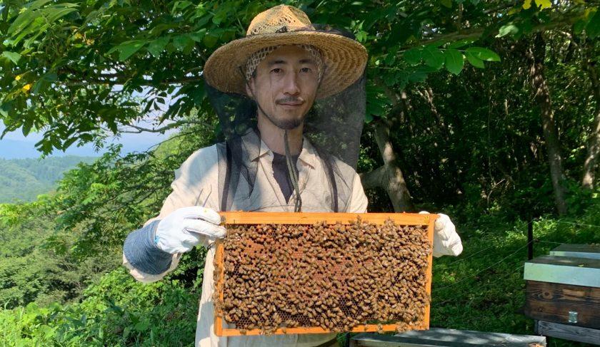 長野県信濃町で国産ハチミツ養蜂場を起業した「美谷島養蜂」の美谷島 豪さんにインタビュー